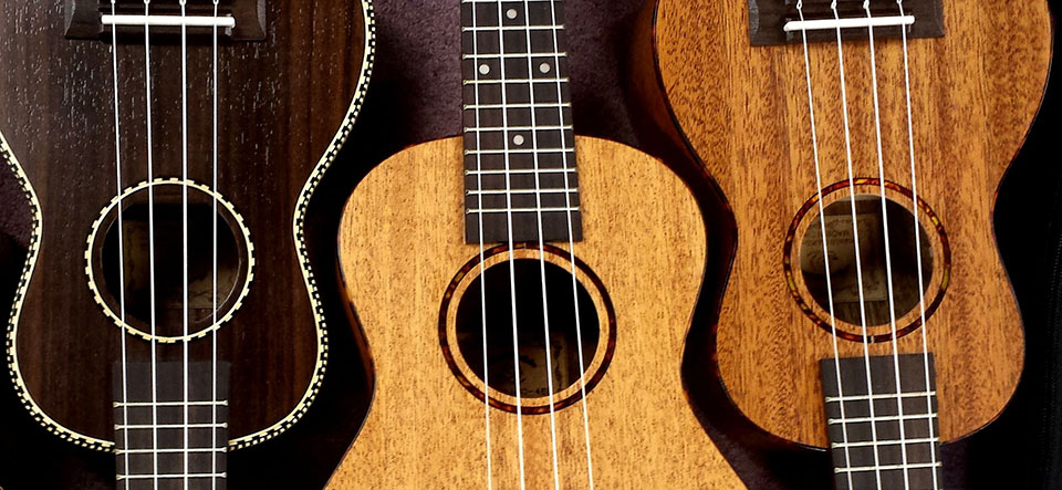 learn the ukulele, ukulele lessons from home and online